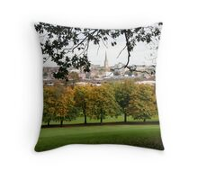 Peace within caos  Throw Pillow