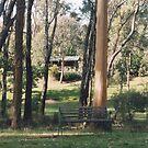 Bush hideaway by Darryl Beer