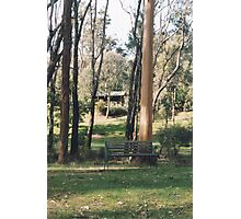 Bush hideaway Photographic Print