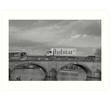 (Our) Habitat Art Print