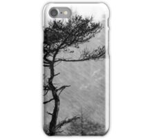 8.1.2015: Pine Tree, Snowfall IV iPhone Case/Skin