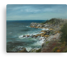 Seagull's View Canvas Print