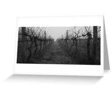 foggy vineyard Greeting Card