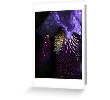 Water on Velvet... Greeting Card
