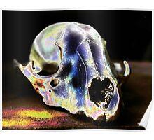Elf Skull Poster