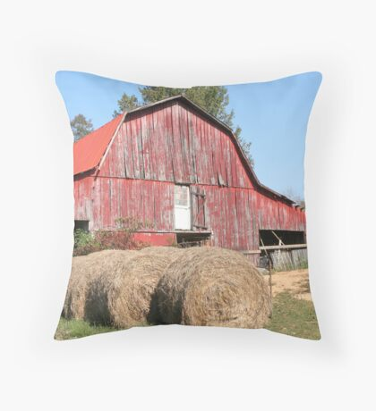 OLD TENNESSEE BARN Throw Pillow