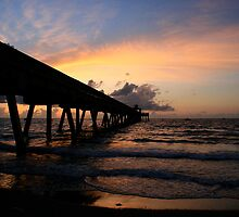 The Pier  by Terry Arcia