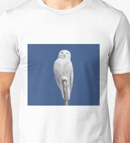 Dreams DO come true (with snow) Unisex T-Shirt