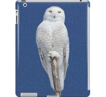 Dreams DO come true (with snow) iPad Case/Skin