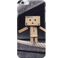 Balancing Act iPhone Case/Skin