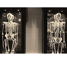 Wunderkammer #1: Ancestry Photographic Print