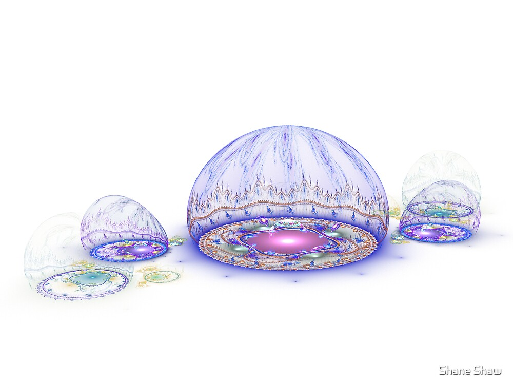 Domes of Light by Shane Shaw