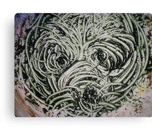 The Shaggy Dog Canvas Print