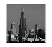 Sears Tower by Mark Routt