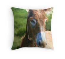 I wish I was a horse Throw Pillow
