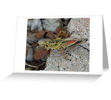 Spring #2 Greeting Card