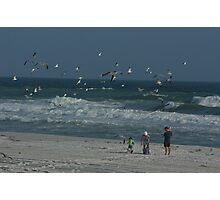 A Flock of Seaguls Photographic Print