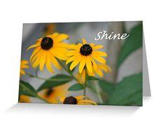 Shine... Greeting Card