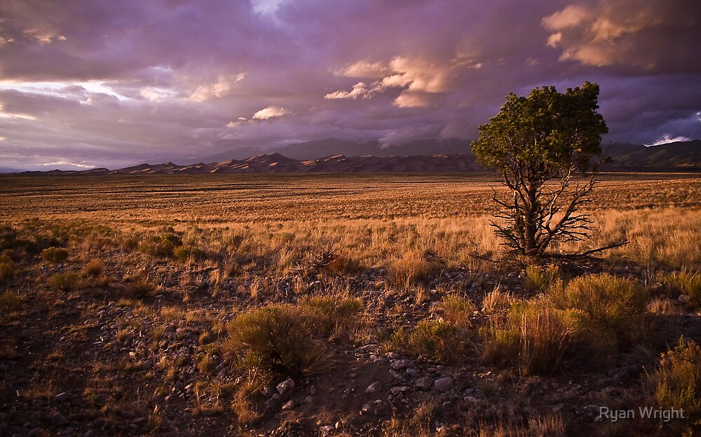 Marvelous Light by Ryan Wright