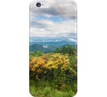 Roan Highlands Flame Azalea Appalachian Trail iPhone Case/Skin