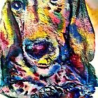 A Basset Face by Marybeth Cunningham