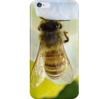 Busy Bee Toowoomba Queensland Australia  iPhone Case/Skin