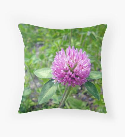 4 Leaves Clover Throw Pillow