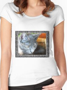 Cat in a basket Women's Fitted Scoop T-Shirt