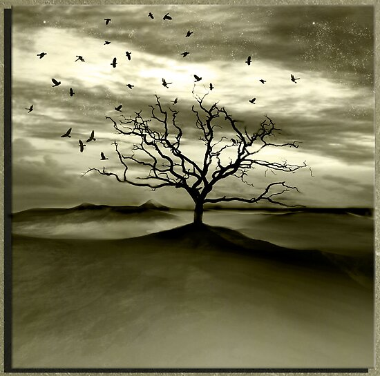 Raven Valley by PhotoDream Art
