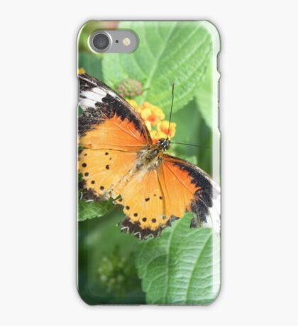 Battered Wings iPhone Case/Skin