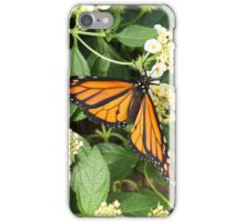 A Rest From Flight iPhone Case/Skin