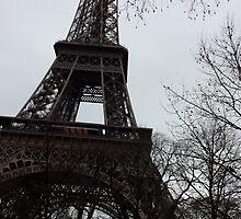 paris by apoliticalgoat