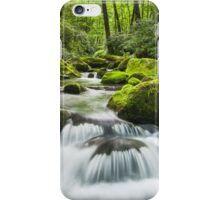 Great Smoky Mountains Roaring Fork Green Cascade iPhone Case/Skin