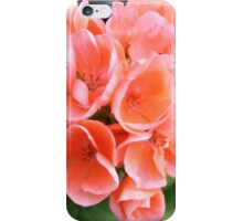 Peach Geraniums iPhone Case/Skin