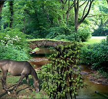 881A-Country Creek Grazing by George W Banks