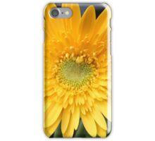 Sunshine Daisy iPhone Case/Skin