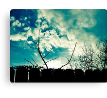 clouds trees and fence Canvas Print