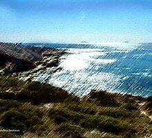 Tide Pools by jpryce