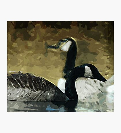 Canada Geese on the Water Abstract Impressionism Photographic Print