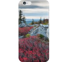Bear Rocks Preserve Dolly Sods West Virginia iPhone Case/Skin