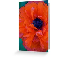 The Poppy Greeting Card