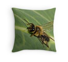Bee on a cabbage leaf Throw Pillow