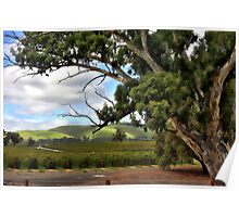Jacobs Winery, South Australia Poster