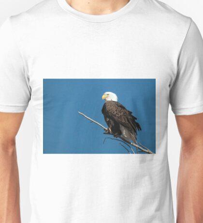 Bald Eagle on branch Unisex T-Shirt