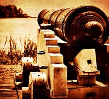 cannon by A.R. Williams