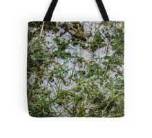 Hailstones in the Grass Tote Bag