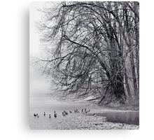 Foggy Lake Canvas Print