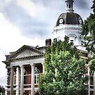 Greenville, GA by A.R. Williams