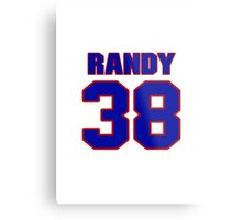 National baseball player Randy Schwartz jersey 38 Metal Print