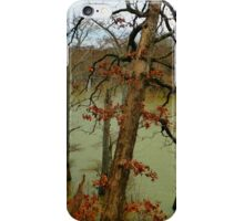 White River In Winter iPhone Case/Skin